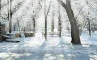 Лучи солнца в зимнем парке.