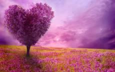 21 весна картинки красивые
