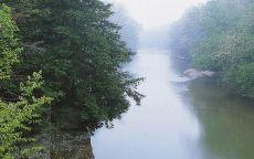 Утренний туман на реке