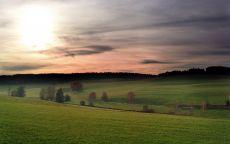 Весенее поле