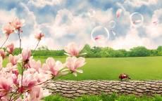 Мыльные пузыри над весеннем полем