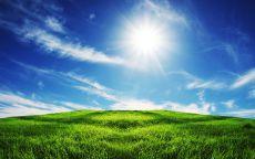 Солнце над полем