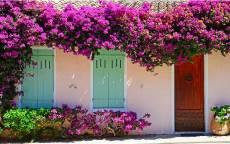 Аккуратный домик под весенними цветами