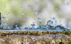 Капли весеннего дождя