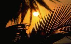Вечернее солнце