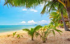 Песчаный берег тропического рая