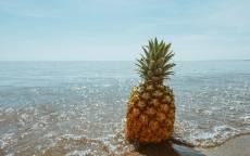 Лето, пляж, море, ананас