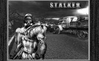 8-S.T.A.L.K.E.R. Сталкер