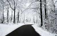 Черно-белая фотография Зимняя дорога.