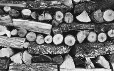 Черно белая, лежанка дров, дрова