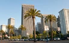 США, Калифорния, Сан-Франциско, небоскребы, пальмы