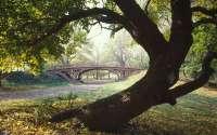 Мост в Центральном парке Нью-Йорка