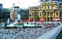 Трафальгарская площадь, Лондон, Англия