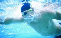 Плавание Вольный стиль