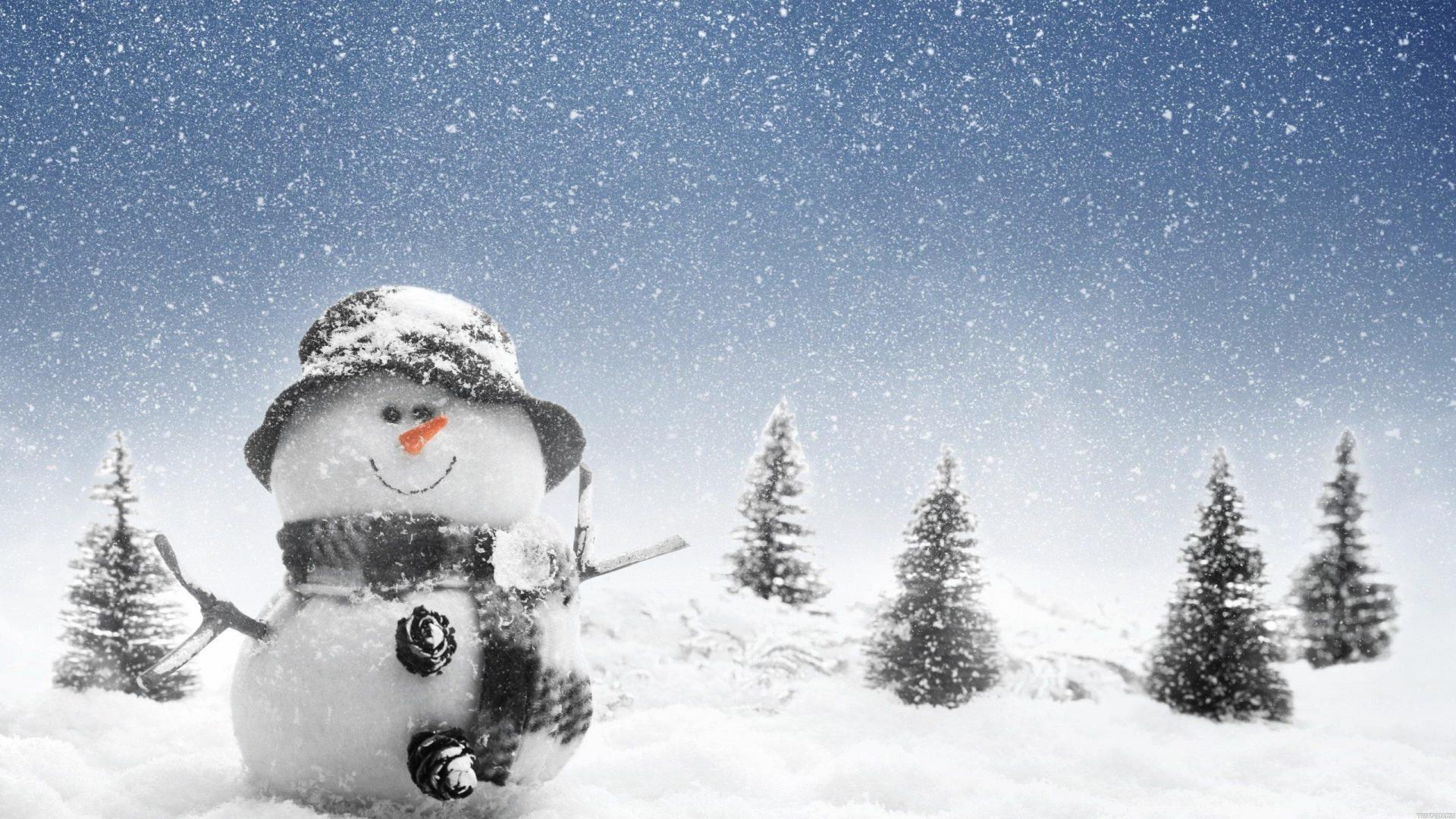 скачать обои для рабочего стола высокого качества бесплатно зима
